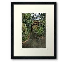 Castle Bridge Framed Print