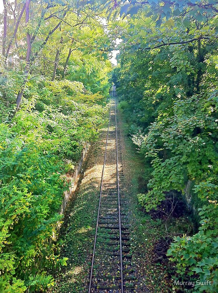 Unused railway line Paris by Murray Swift