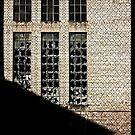 Shadow  by Fyrion