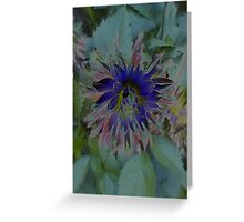 JWFrench Collection Flower 6 Greeting Card