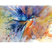 """As kingfishers catch fire..."" Photographic Print"