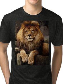 Heart of a lion Tri-blend T-Shirt