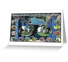 Evergreen Arboretum Greeting Card