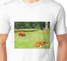Two companions Unisex T-Shirt