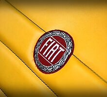 Fiat logo  by Renee Eppler