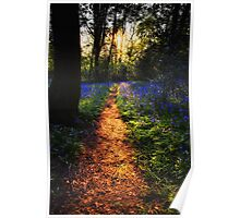 The Golden Path Poster