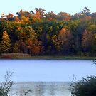 Autumn Evening at the Lake by Georgia Wild