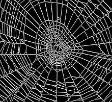 Spider Web black by Marvin Hayes