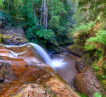 Cascade 3 above Liffy Falls by Stephen  Nicholson