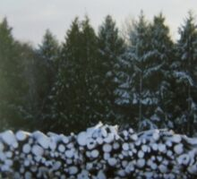 Winter Logs Sticker