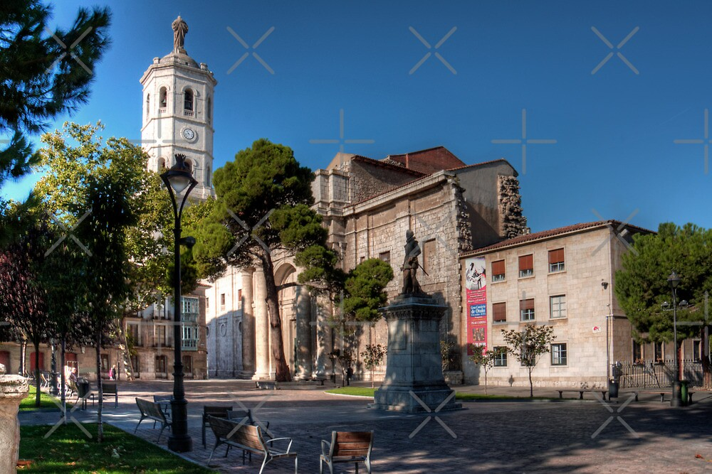 Cathedral of Valladolid by Tom Gomez