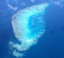 Coral Reef in the Great Barrier Reef by styles