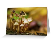 automn bunch Greeting Card