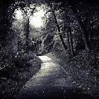 Along the Path by Konoko479