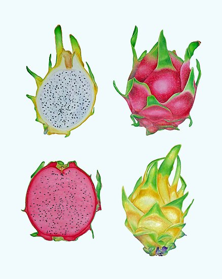 Dragon Fruit by joeyartist