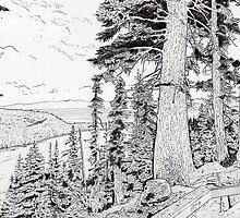 Emerald Bay, Lake Tahoe 2 by Diana Cardosi-Bussone
