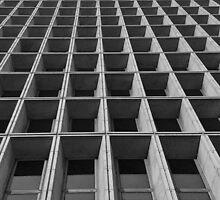 Rectangular Vertigo by Rusty Gentry