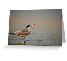Mr. Black Cap Greeting Card