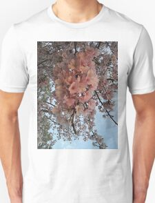 Cherry Blossoms 61 T-Shirt