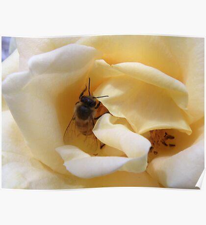 Bee Mine Poster
