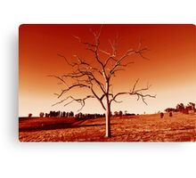 The Tree in Red Canvas Print