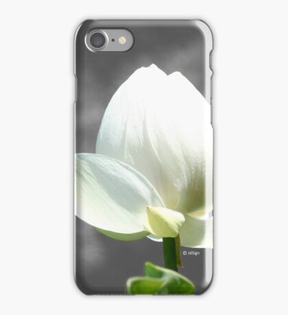 Pure Flower iPhone Case/Skin