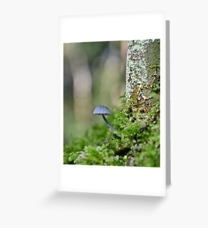 Nitrous Bonnet   ,   mycena  leptocephala. Greeting Card
