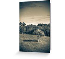 alone tree. Greeting Card
