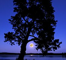 Watching the supermoon rise by BBrightman