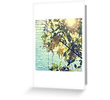 Busy bee and locust tree Greeting Card