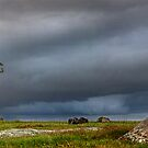 Storm over Dog Rocks - Geelong by Hans Kawitzki
