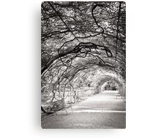 Perfect pergola Canvas Print