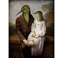 The Hummingbirds Photographic Print