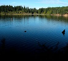 Westwood Lake, Nanaimo by rsangsterkelly