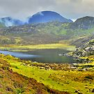 The Lake District: Blackbeck Tarn, Haystacks by Rob Parsons