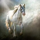 Silver Gypsy by Tarrby