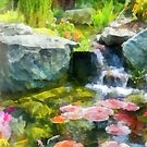 Koi Pond by Susan Savad