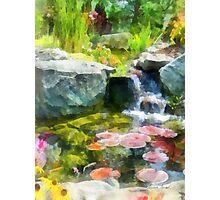 Koi Pond Photographic Print