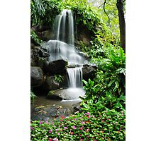 Waterfall and the beautiful flowers in the garden Photographic Print
