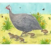 Guinea Hen Chicks Spring Daffodils Art Cathy Peek Photographic Print