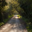 Road In Normandy by Johannes Valkama