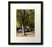 Sunlit Street Framed Print