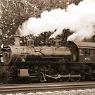 Trains by Penny Rinker