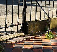 Garden Gate in Dublin City by Áine Warren