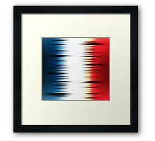 French flag Framed Print