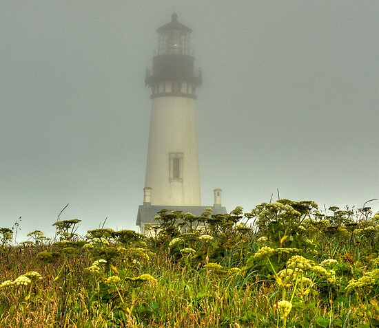 Foggy Morning on the Coast by Cynthia Broomfield