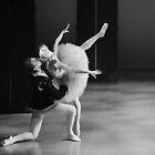 Swan Lake Ballet by cherylc1
