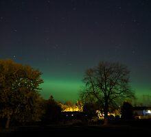 Green Northern Lights by Josef Pittner