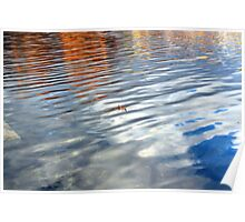 Lonely Fall Lake Leaf Poster