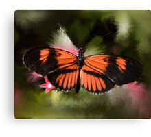 Black and Orange Butterfly Canvas Print